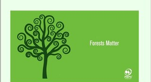 Timber & Forestry E News Issue 400