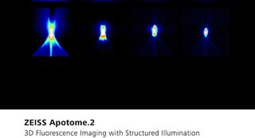 ZEISS Apotome - Fluorescence Imaging for Microscopy with Structured Illumination