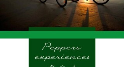 Peppers Beach Club Experience Brochure