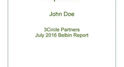 Sample Belbin Report