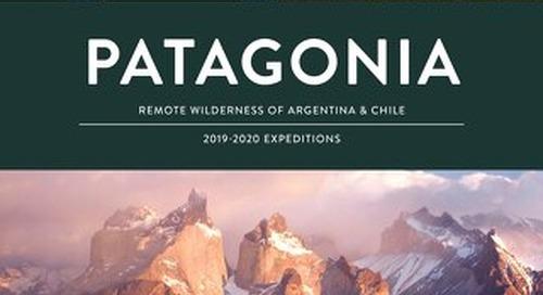 Patagonia 2019-2020