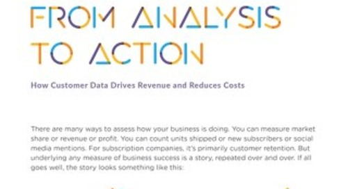 From Analysis to Action: How Customer Data Drives Revenue and Reduces Costs