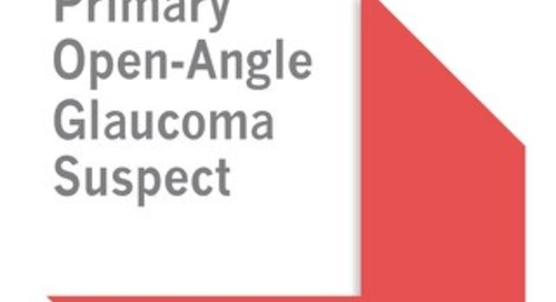 AAO Primary Open Angle Glaucoma Suspect