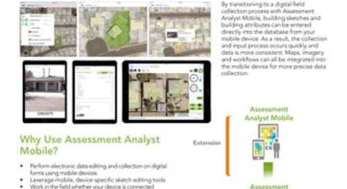 Assessment Analyst Mobile