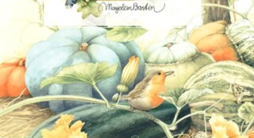 Marjolein Bastin Fall 2016 Collection