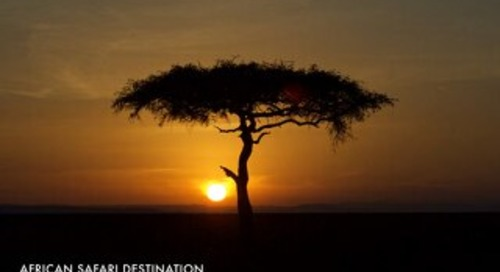 Safari destiantion Kenya