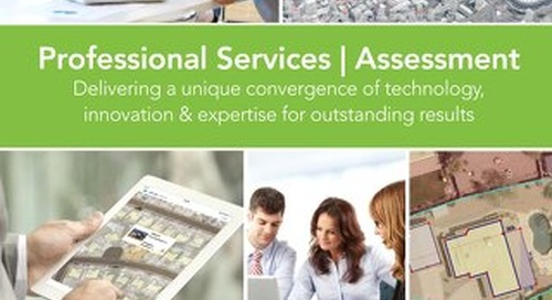 Professional Services - Assessment