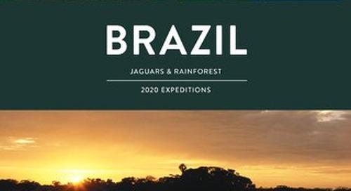 Brazil 2019