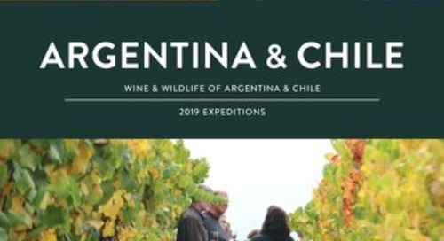 Argentina and Chile - Wine and Wildlife 2019