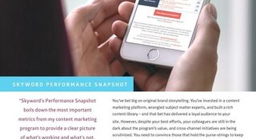 Skyword Performance Snapshot Dashboard Reporting
