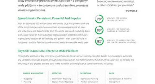 Vena: An Enterprise Excel Platform