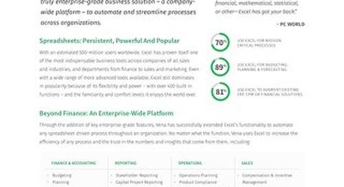 Vena: An Enterprise Excel Platform
