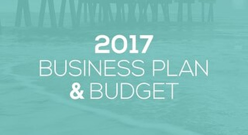 Visit Tybee 2017 Business Plan
