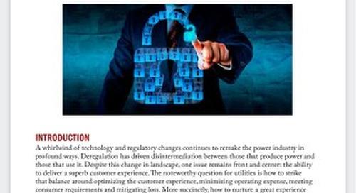 Combating Utility Fraud Rings