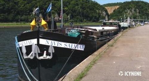 Navis Salviae in Belgium