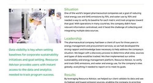 Healthcare: Global Pharmaceutical Supplier