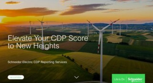 CDP Reporting