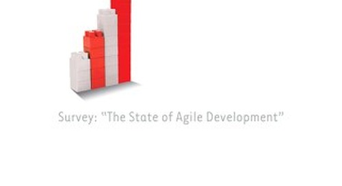 1st Annual State of Agile Report