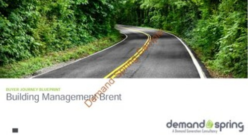 Demand Spring - Buyer Journey Sample Overview
