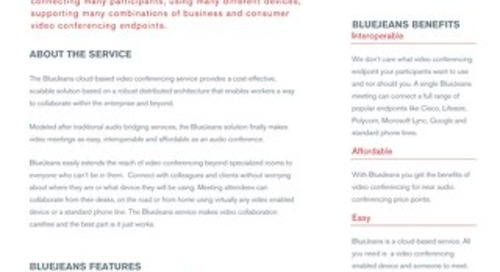 BlueJeans Overview