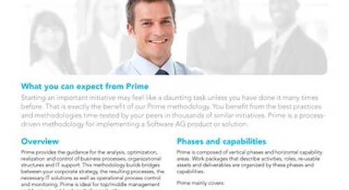 Prime for Business Process Analysis