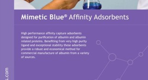 Mimetic Blue Brochure