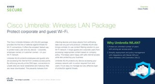 Umbrella Wireless LAN (WLAN) Package