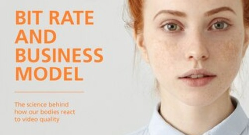 Akamai - Bit Rate and Business Model White Paper