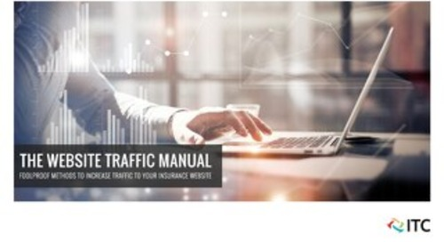 The Website Traffic Manual