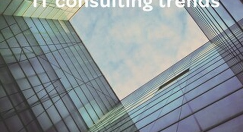 Industry Snapshot_IT Consulting