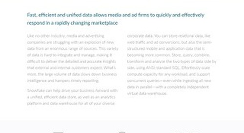 Finding Insight in Diverse Media and Advertising Data