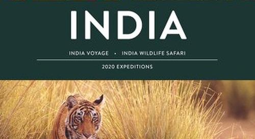 India 2020