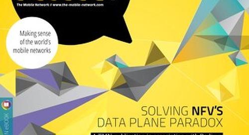 Solving NFV's Data Plane Paradox