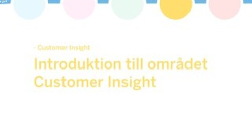 White paper: En introduktion till området Customer Insight