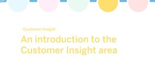White paper: An introduction to the Customer Insight Area