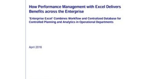 Whitepaper: Enterprise Excel for Performance Management