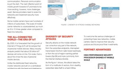 Solution Brief - Security Solution for Mobile Carriers