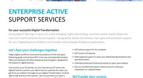 Enterprise Active Support Services
