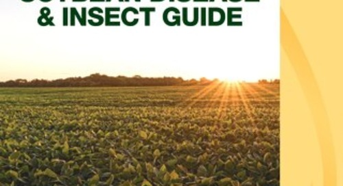 Seed- and Soil-Borne Disease Guide