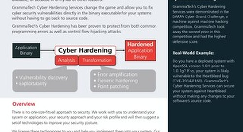 GrammaTech Cyber Hardening Services