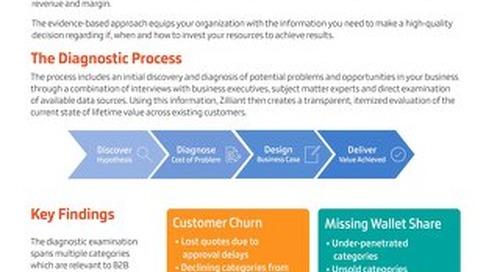 Zilliant Diagnostic Overview