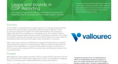 Case Study: How Vallourec Made Leaps and Bounds in CDP Reporting