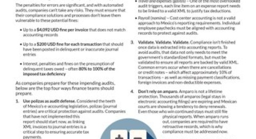 Mexico Audit Tips