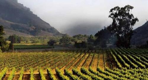 Signature Wines & Wineries Coastal California