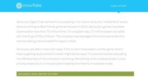 Seriously Digital Entertainment Case Study