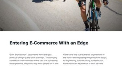 Giant Bicycles Case Study