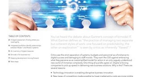 Bimodal Success via IT Portfolio Management