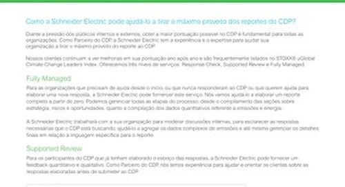 Portuguese CDP Reporting