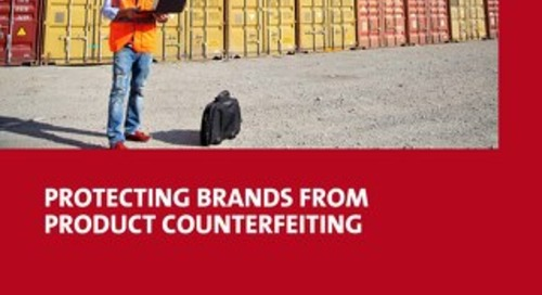 Learn what it takes to build a brand protection program