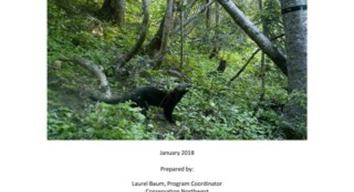 2017 Citizen Wildlife Monitoring Project Report_FINAL_WithoutAppendices